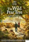 Filmplakat Wild Pear Tree, The